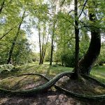 humus-park-2016-torre-di-pordenone-17