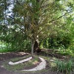 humus-park-2016-torre-di-pordenone-28